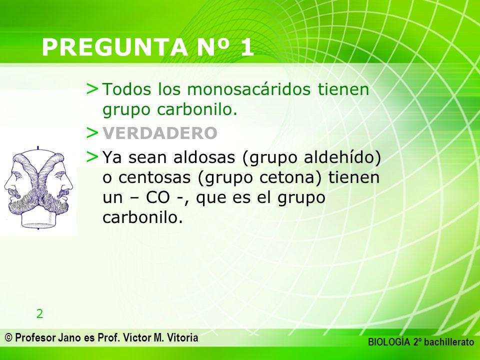 13 © Profesor Jano es Prof.Víctor M.