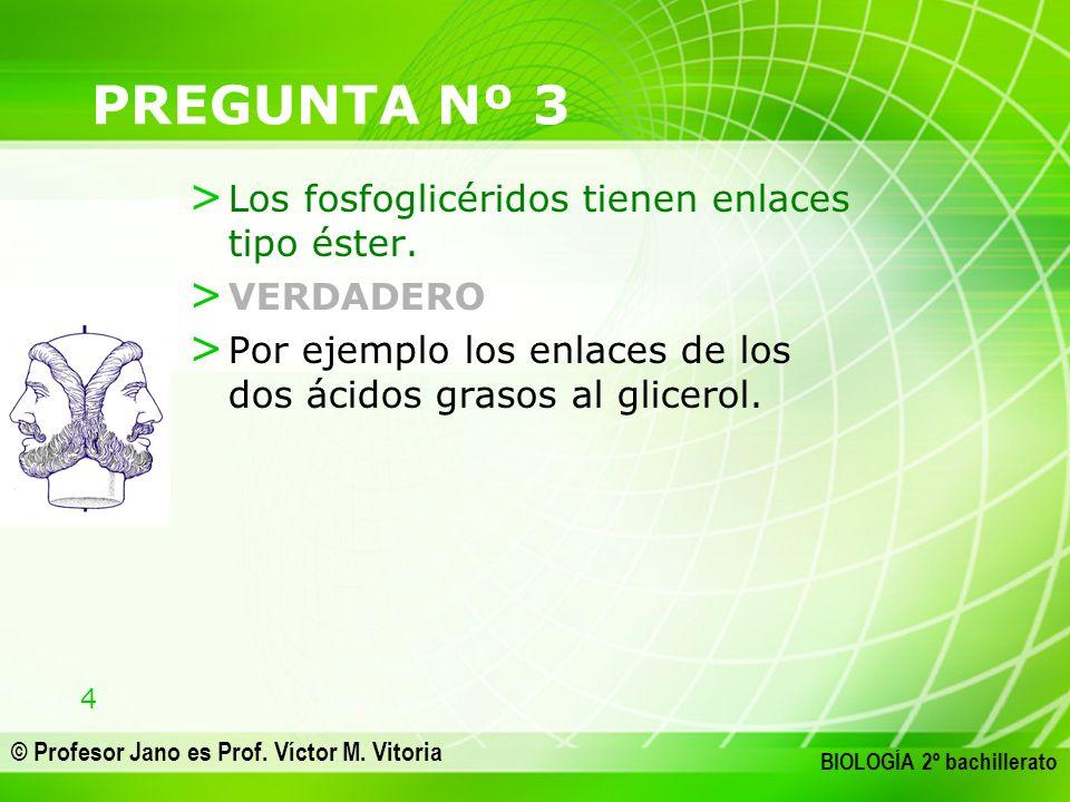 4 © Profesor Jano es Prof. Víctor M. Vitoria BIOLOGÍA 2º bachillerato PREGUNTA Nº 3 > Los fosfoglicéridos tienen enlaces tipo éster. > VERDADERO > Por