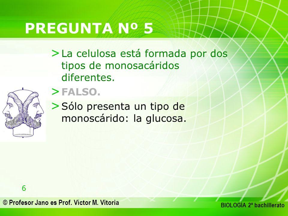 6 © Profesor Jano es Prof. Víctor M. Vitoria BIOLOGÍA 2º bachillerato PREGUNTA Nº 5 > La celulosa está formada por dos tipos de monosacáridos diferent