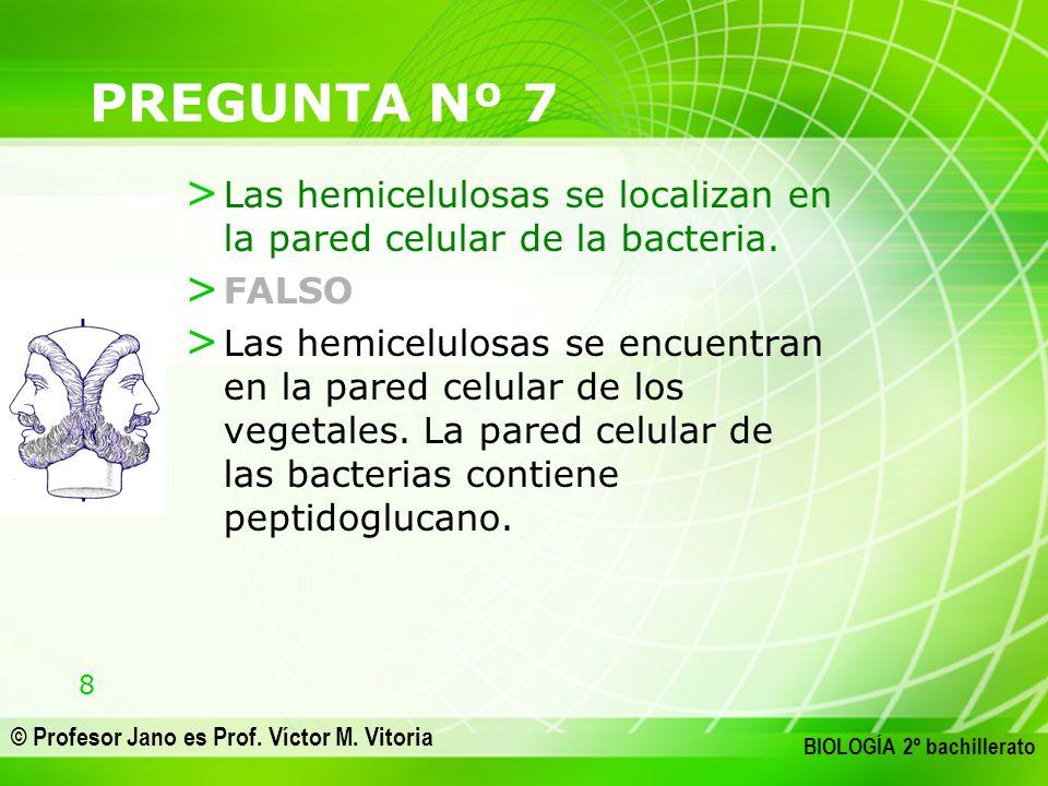 8 © Profesor Jano es Prof. Víctor M. Vitoria BIOLOGÍA 2º bachillerato PREGUNTA Nº 7 > Las hemicelulosas se localizan en la pared celular de la bacteri