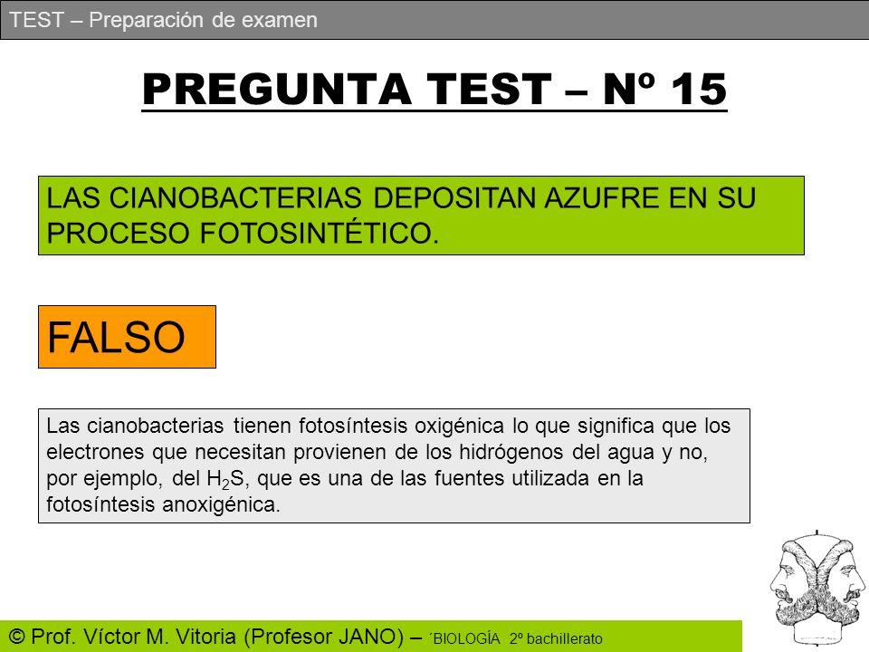 TEST – Preparación de examen © Prof. Víctor M. Vitoria (Profesor JANO) – ´BIOLOGÍA 2º bachillerato PREGUNTA TEST – Nº 15 LAS CIANOBACTERIAS DEPOSITAN