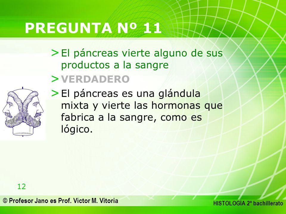 12 © Profesor Jano es Prof. Víctor M. Vitoria HISTOLOGÍA 2º bachillerato PREGUNTA Nº 11 > El páncreas vierte alguno de sus productos a la sangre > VER