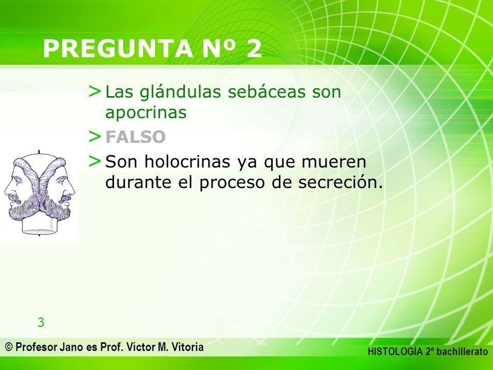 3 © Profesor Jano es Prof. Víctor M. Vitoria HISTOLOGÍA 2º bachillerato PREGUNTA Nº 2 > Las glándulas sebáceas son apocrinas > FALSO > Son holocrinas