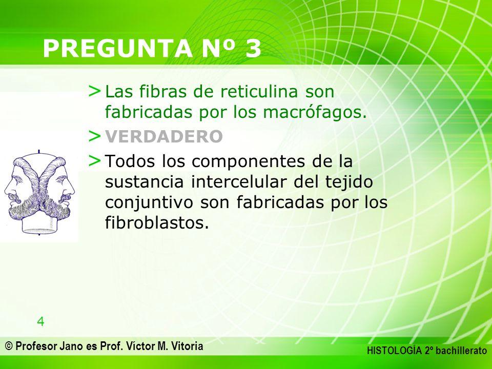 4 © Profesor Jano es Prof. Víctor M. Vitoria HISTOLOGÍA 2º bachillerato PREGUNTA Nº 3 > Las fibras de reticulina son fabricadas por los macrófagos. >