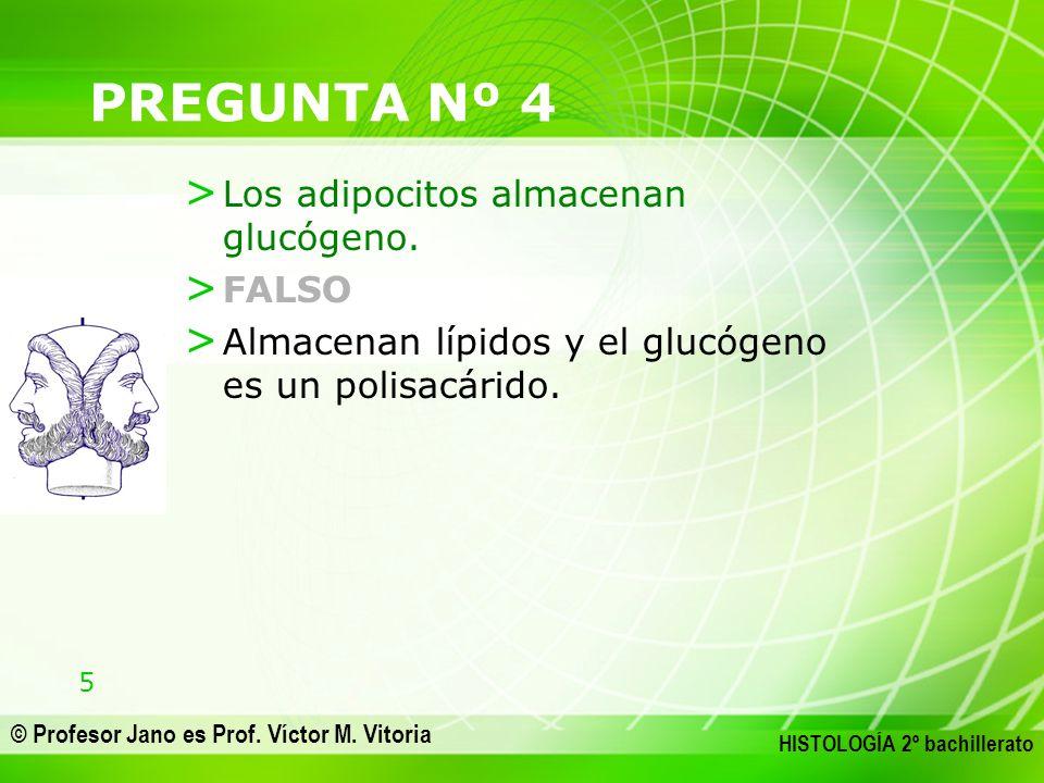 5 © Profesor Jano es Prof. Víctor M. Vitoria HISTOLOGÍA 2º bachillerato PREGUNTA Nº 4 > Los adipocitos almacenan glucógeno. > FALSO > Almacenan lípido