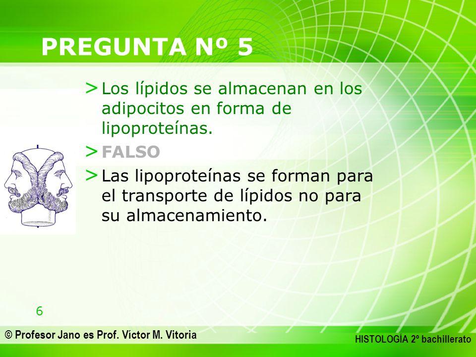 6 © Profesor Jano es Prof. Víctor M. Vitoria HISTOLOGÍA 2º bachillerato PREGUNTA Nº 5 > Los lípidos se almacenan en los adipocitos en forma de lipopro