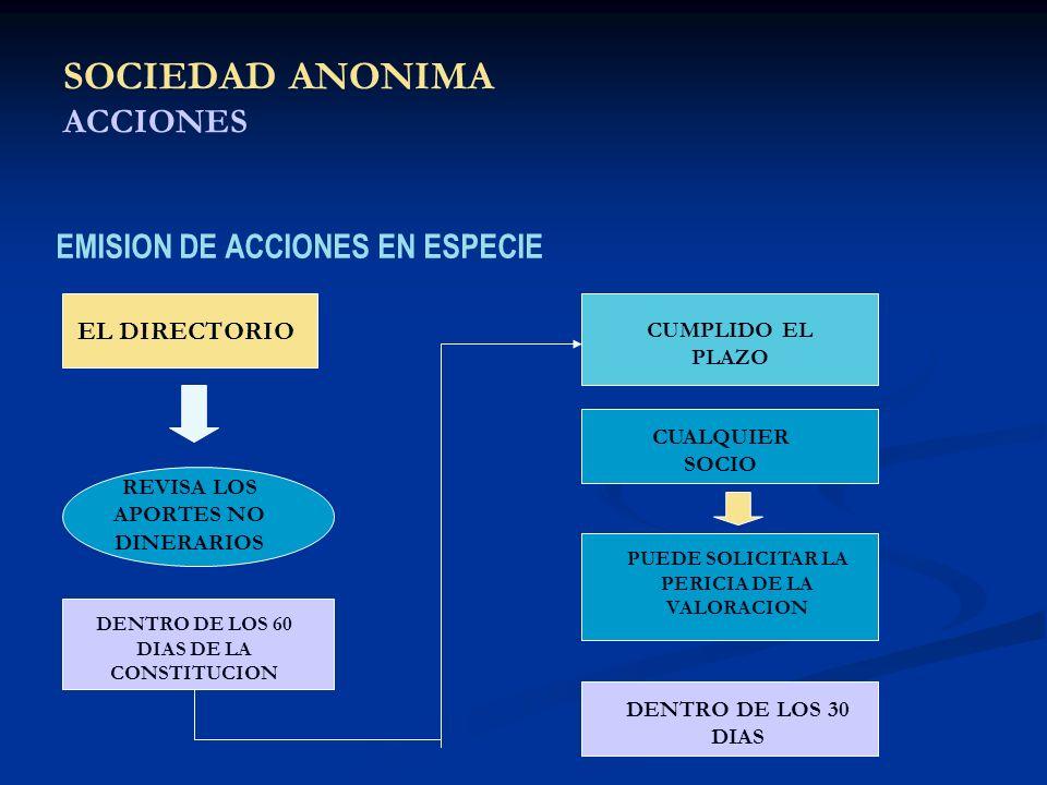 SOCIEDAD ANONIMA ACCIONES EMISION DE ACCIONES EN ESPECIE EL DIRECTORIO REVISA LOS APORTES NO DINERARIOS DENTRO DE LOS 60 DIAS DE LA CONSTITUCION CUMPL
