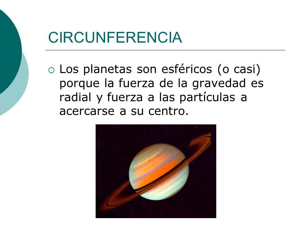 CIRCUNFERENCIA Los planetas son esféricos (o casi) porque la fuerza de la gravedad es radial y fuerza a las partículas a acercarse a su centro.