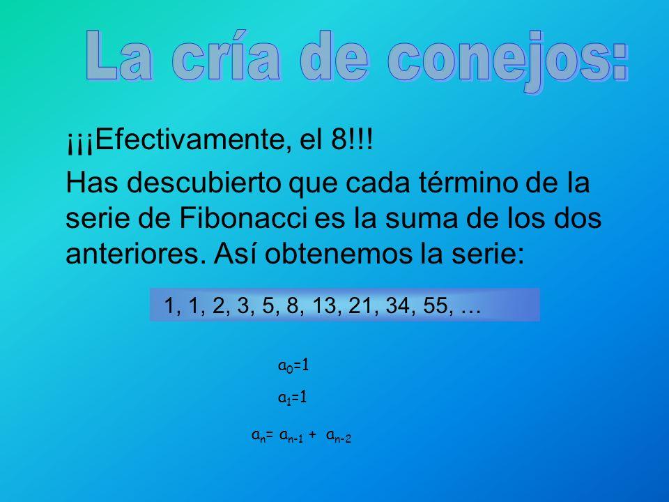 ¡¡¡Efectivamente, el 8!!! Has descubierto que cada término de la serie de Fibonacci es la suma de los dos anteriores. Así obtenemos la serie: 1, 1, 2,