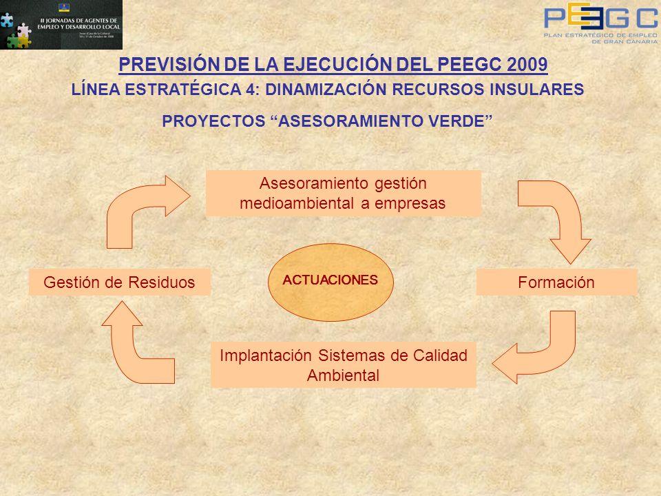PREVISIÓN DE LA EJECUCIÓN DEL PEEGC 2009 LÍNEA ESTRATÉGICA 4: DINAMIZACIÓN RECURSOS INSULARES PROYECTOS ASESORAMIENTO VERDE Asesoramiento gestión medi