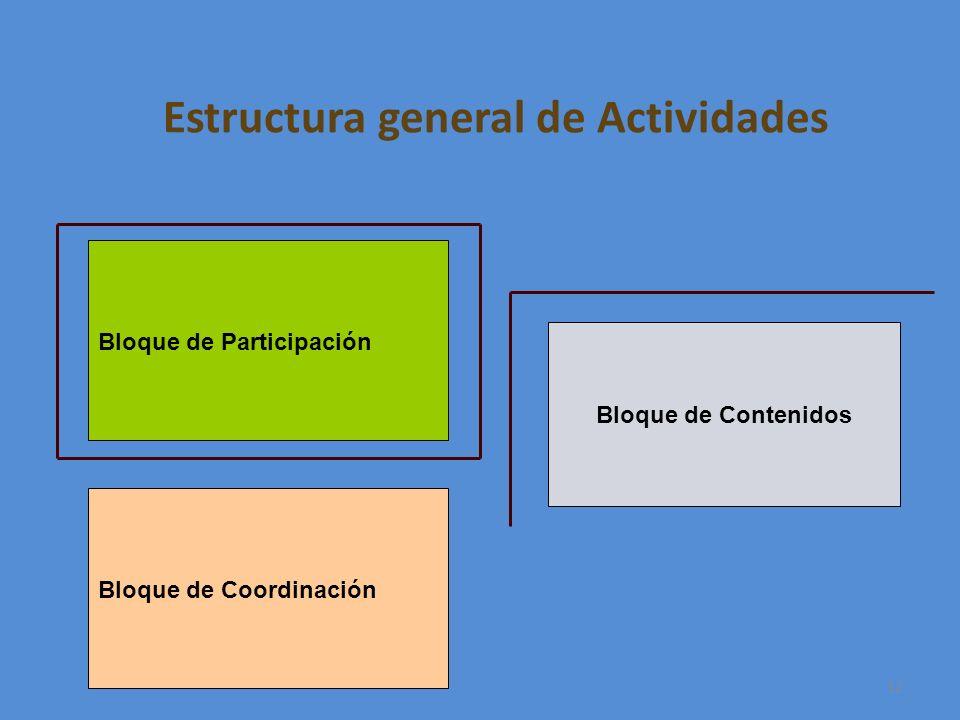 12 Estructura general de Actividades Bloque de Participación Bloque de Contenidos Bloque de Coordinación