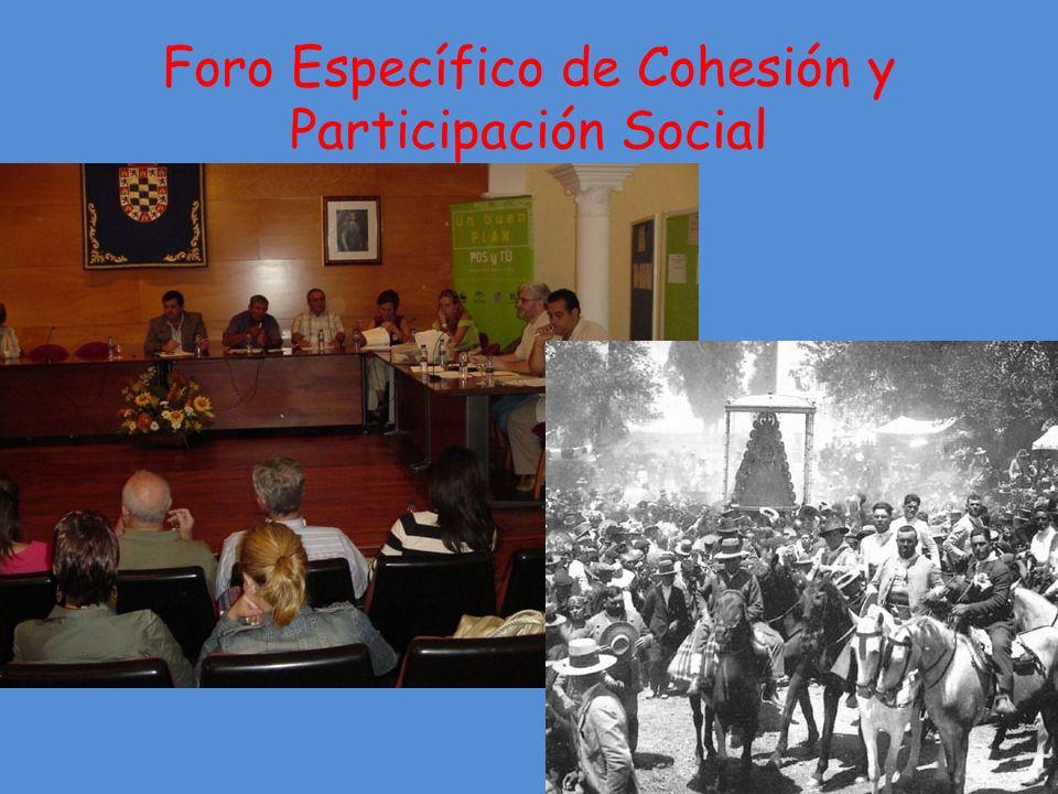 Foro Específico de Cohesión y Participación Social