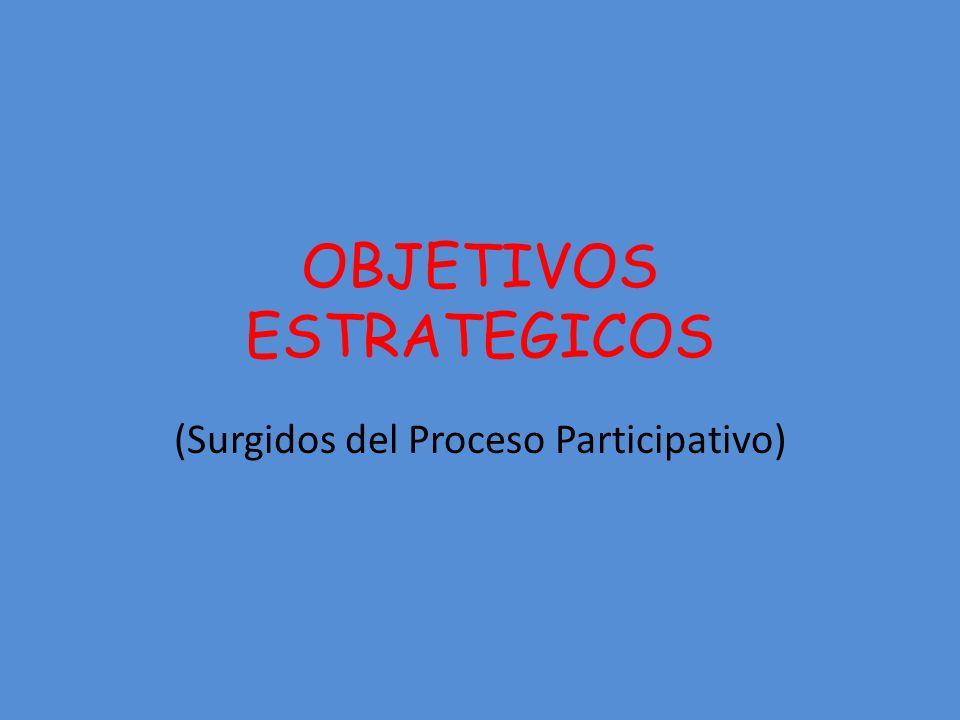 OBJETIVOS ESTRATEGICOS (Surgidos del Proceso Participativo)