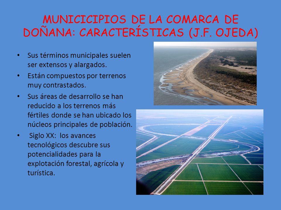 MUNICICIPIOS DE LA COMARCA DE DOÑANA: CARACTERÍSTICAS (J.F.