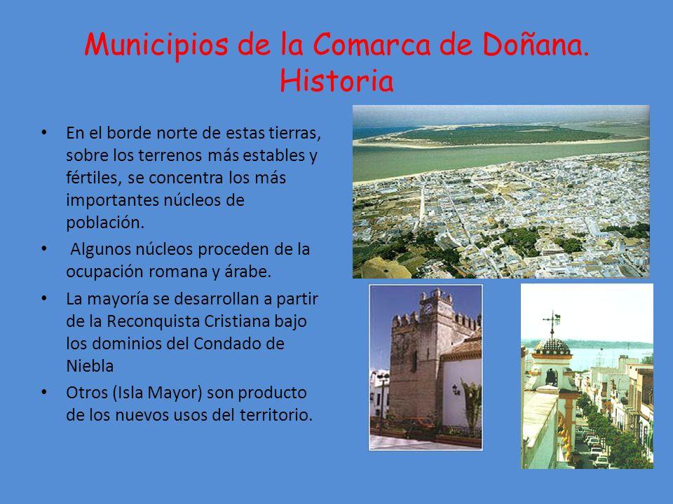 Municipios de la Comarca de Doñana.