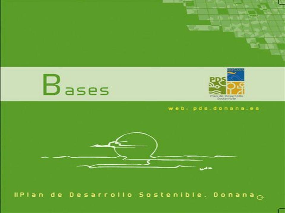 Participación Virtual Visitas Página Web: 32.435 Acceso a contenidos: 674.703 Descargas: 54.37 GB www.pds.donana.es