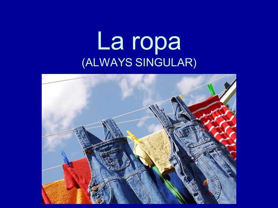 La ropa (ALWAYS SINGULAR)