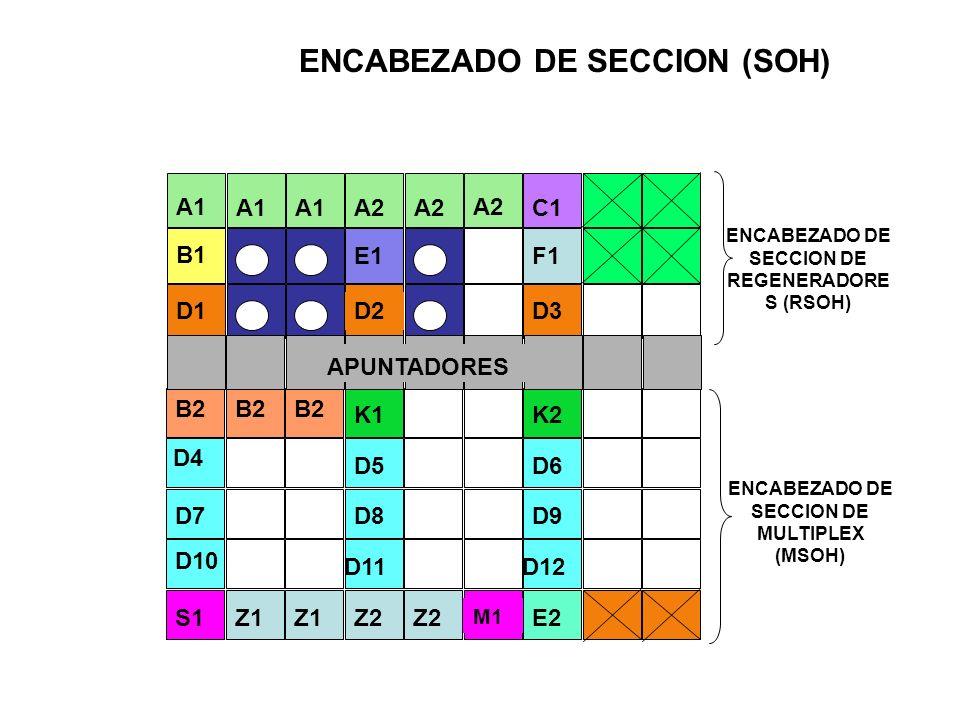 EL POH LIBRES PARA USO FUTURO ENCABEZADO DE TRAYECTO (POH) J1 B3 C2 G1 F2 H4 Z3 Z4 Z5 INDICADOR DE MULTITRAMA CANAL DE USUARIO VC-4 DE 64 Kb/s ESTADO