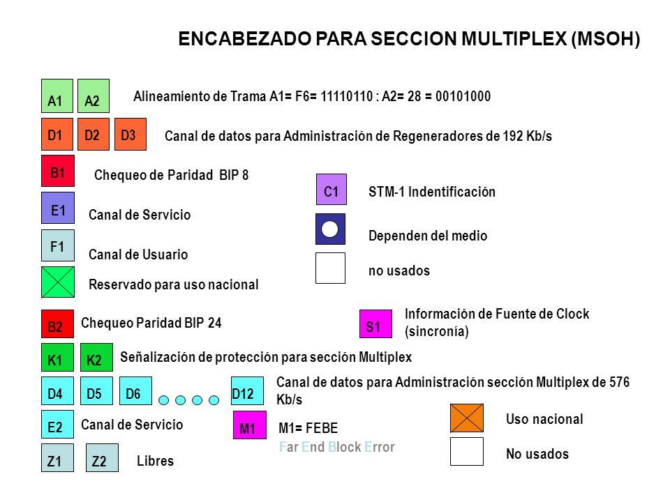 ENCABEZADO DE SECCION (SOH) A1 A2 C1 B1 E1F1 D1D2D3 A1 D7D8D9 D10 D11D12 B2 K1K2 D4 D5D6 Z1 M1 Z2 E2S1 APUNTADORES ENCABEZADO DE SECCION DE REGENERADO