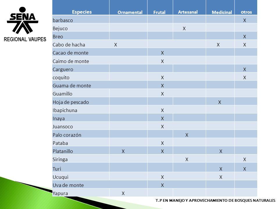 REGIONAL VAUPES T.P EN MANEJO Y APROVECHAMIENTO DE BOSQUES NATURALES Especies Ornamental Frutal Artesanal Medicinal o tros barbasco X Bejuco X Breo X