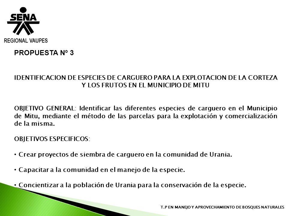 REGIONAL VAUPES T.P EN MANEJO Y APROVECHAMIENTO DE BOSQUES NATURALES PROPUESTA Nº 3 IDENTIFICACION DE ESPECIES DE CARGUERO PARA LA EXPLOTACION DE LA C
