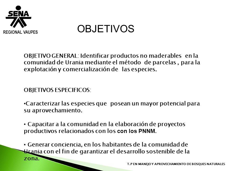 REGIONAL VAUPES T.P EN MANEJO Y APROVECHAMIENTO DE BOSQUES NATURALES OBJETIVO GENERAL: Identificar productos no maderables en la comunidad de Urania m
