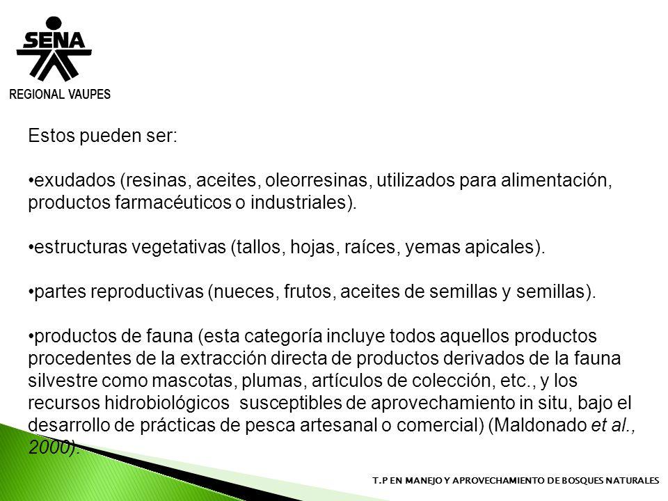 REGIONAL VAUPES T.P EN MANEJO Y APROVECHAMIENTO DE BOSQUES NATURALES Estos pueden ser: exudados (resinas, aceites, oleorresinas, utilizados para alime