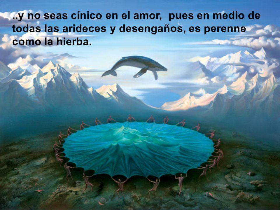 ..y no seas cínico en el amor, pues en medio de todas las arideces y desengaños, es perenne como la hierba.