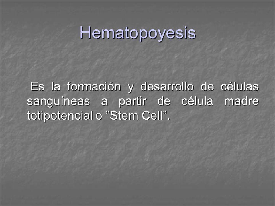 Hematopoyesis Es la formación y desarrollo de células sanguíneas a partir de célula madre totipotencial o Stem Cell. Es la formación y desarrollo de c