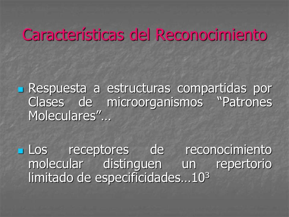 Características del Reconocimiento Respuesta a estructuras compartidas por Clases de microorganismos Patrones Moleculares… Respuesta a estructuras com