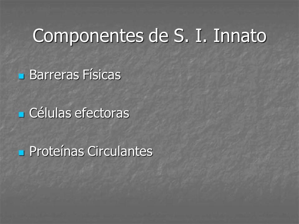 Componentes de S. I. Innato Barreras Físicas Barreras Físicas Células efectoras Células efectoras Proteínas Circulantes Proteínas Circulantes