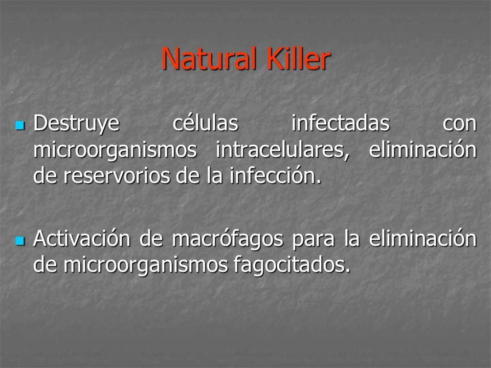 Natural Killer Destruye células infectadas con microorganismos intracelulares, eliminación de reservorios de la infección. Destruye células infectadas