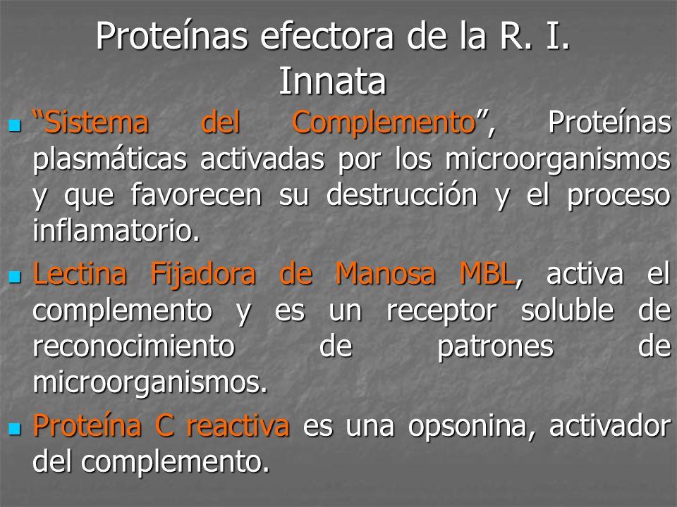 Proteínas efectora de la R. I. Innata Sistema del Complemento, Proteínas plasmáticas activadas por los microorganismos y que favorecen su destrucción