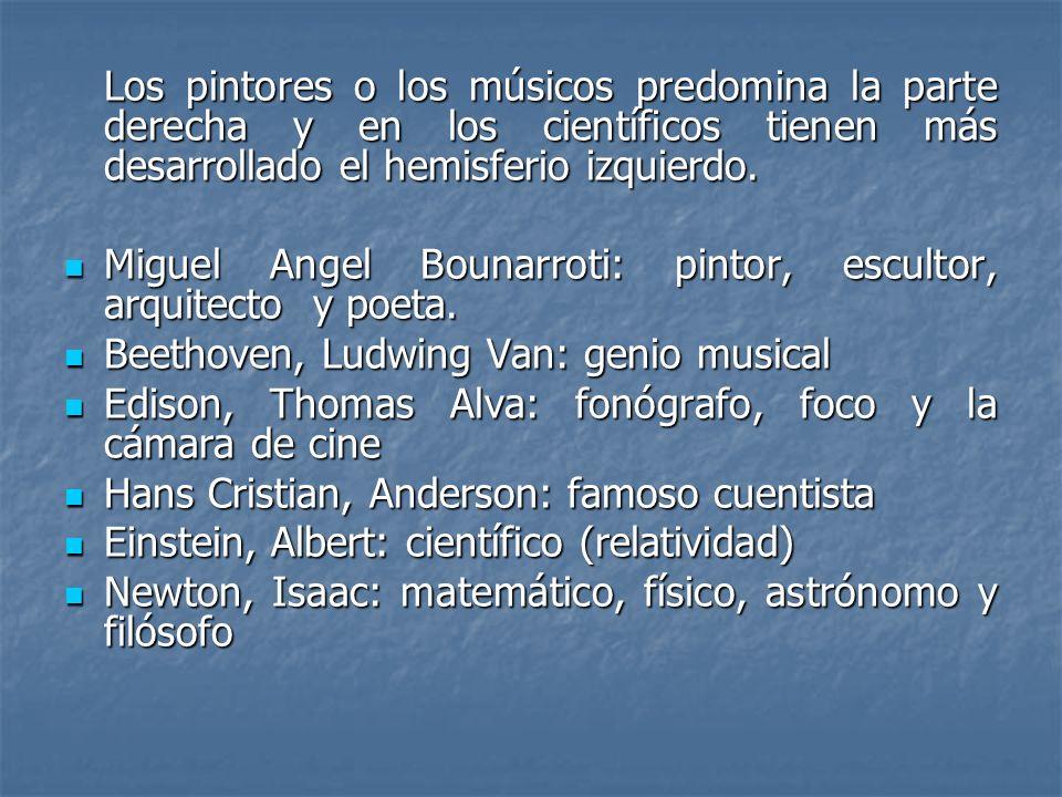 Los pintores o los músicos predomina la parte derecha y en los científicos tienen más desarrollado el hemisferio izquierdo. Miguel Angel Bounarroti: p