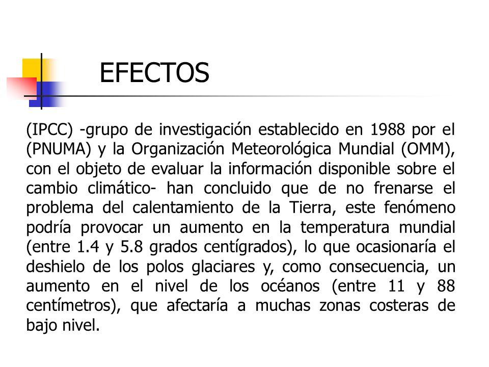 (IPCC) -grupo de investigación establecido en 1988 por el (PNUMA) y la Organización Meteorológica Mundial (OMM), con el objeto de evaluar la informaci