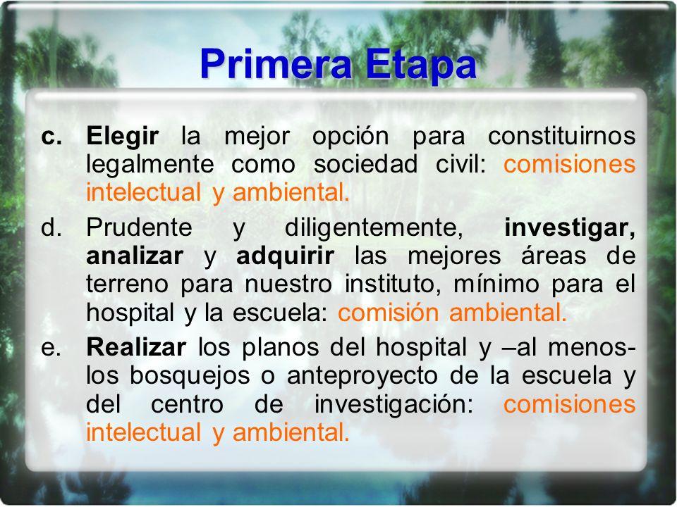 Primera Etapa c.Elegir la mejor opción para constituirnos legalmente como sociedad civil: comisiones intelectual y ambiental.