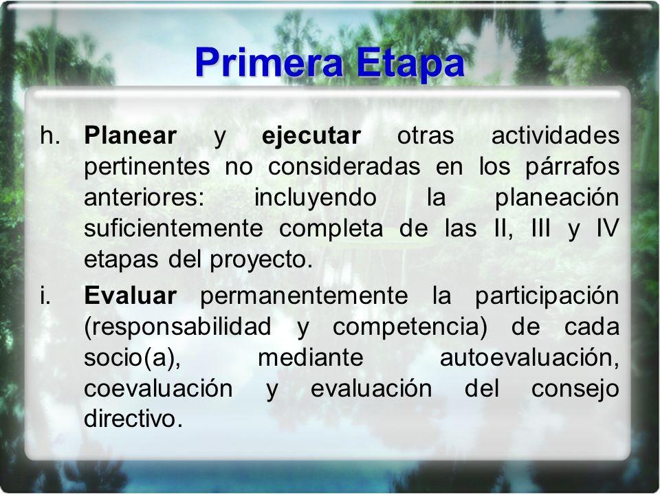 Primera Etapa h. Planear y ejecutar otras actividades pertinentes no consideradas en los párrafos anteriores: incluyendo la planeación suficientemente