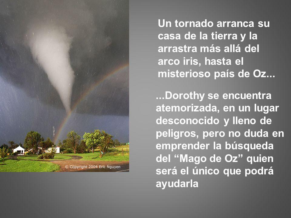 Un tornado arranca su casa de la tierra y la arrastra más allá del arco iris, hasta el misterioso país de Oz......Dorothy se encuentra atemorizada, en