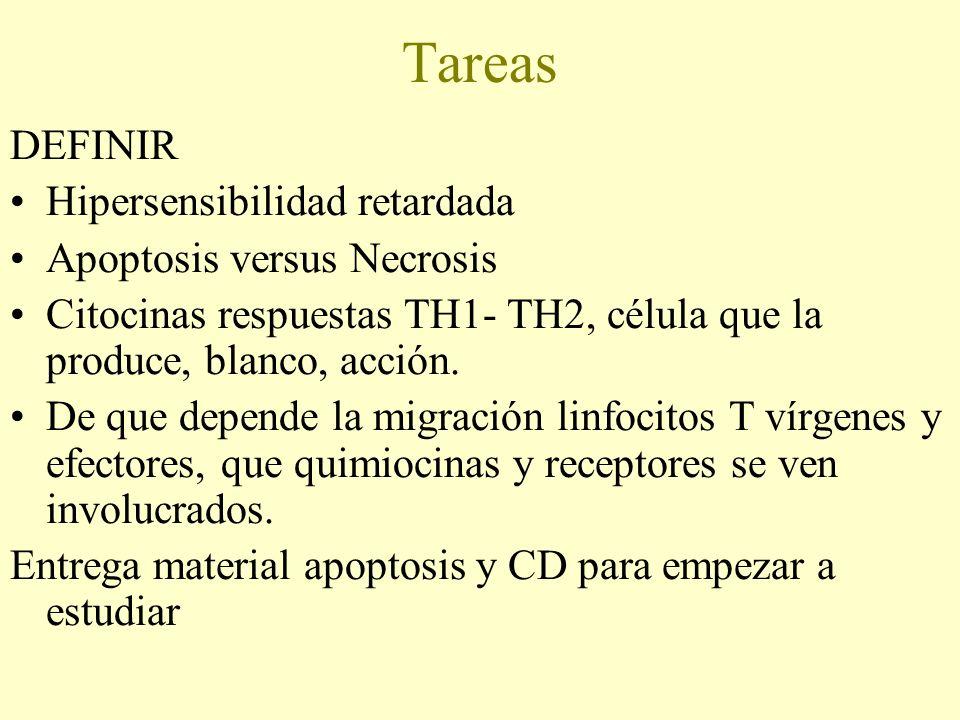 Tareas DEFINIR Hipersensibilidad retardada Apoptosis versus Necrosis Citocinas respuestas TH1- TH2, célula que la produce, blanco, acción. De que depe