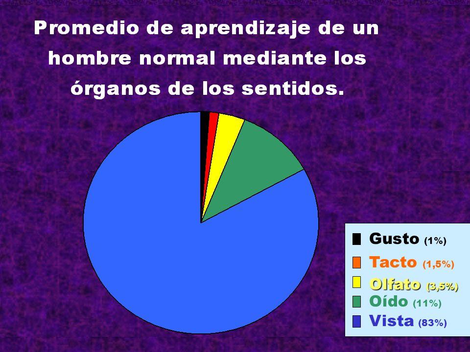 Tacto (1,5%) Gusto (1%) Olfato (3,5%) Oído (11%) Vista (83%)