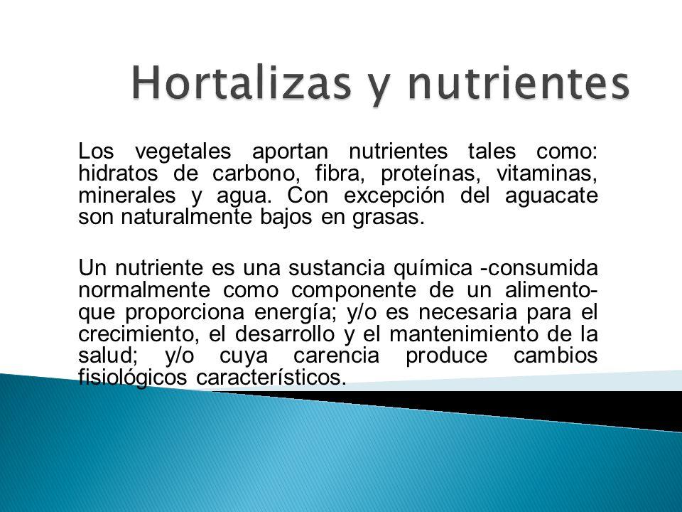 Los vegetales aportan nutrientes tales como: hidratos de carbono, fibra, proteínas, vitaminas, minerales y agua. Con excepción del aguacate son natura