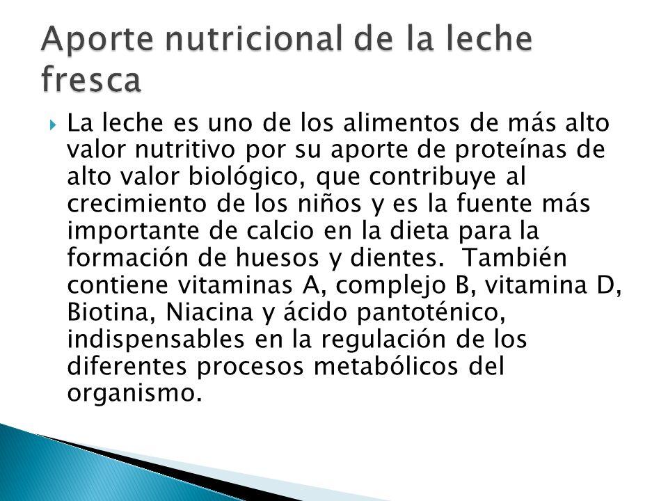La leche es uno de los alimentos de más alto valor nutritivo por su aporte de proteínas de alto valor biológico, que contribuye al crecimiento de los