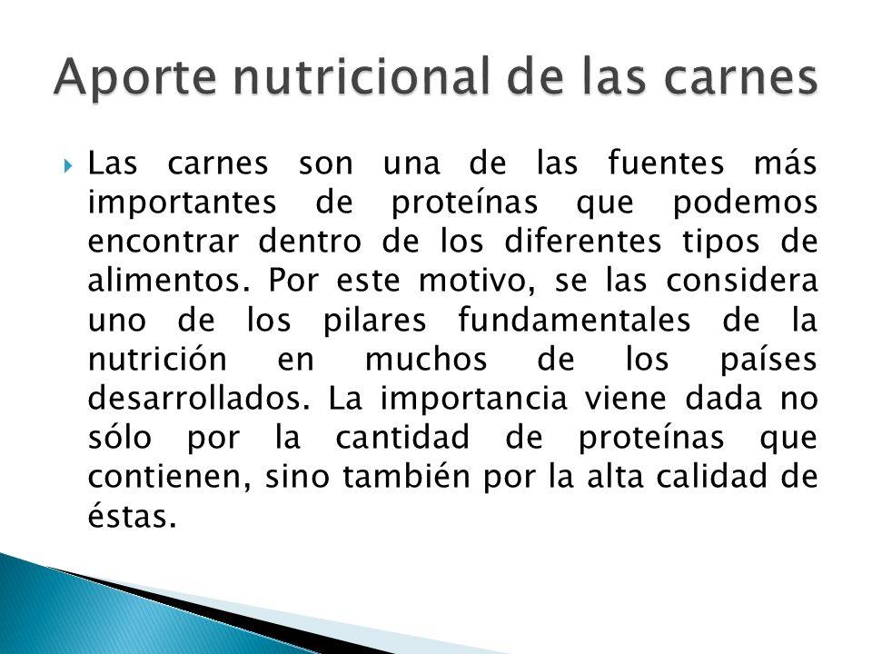 Las carnes son una de las fuentes más importantes de proteínas que podemos encontrar dentro de los diferentes tipos de alimentos. Por este motivo, se