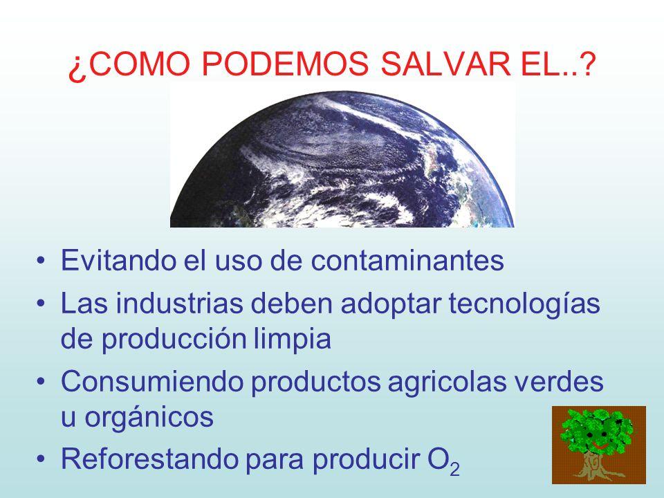 ¿ COMO PODEMOS SALVAR EL..? Evitando el uso de contaminantes Las industrias deben adoptar tecnologías de producción limpia Consumiendo productos agric