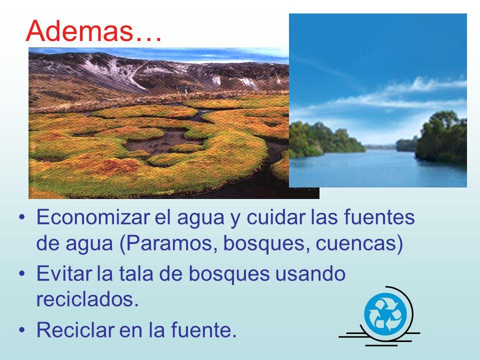 Ademas… Economizar el agua y cuidar las fuentes de agua (Paramos, bosques, cuencas) Evitar la tala de bosques usando reciclados. Reciclar en la fuente