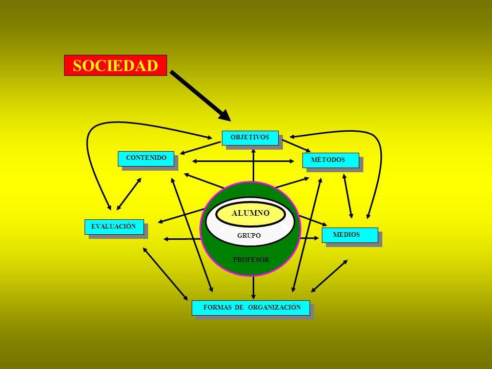PROFESOR GRUPO ALUMNO OBJETIVOS CONTENIDO MÉTODOS MEDIOS EVALUACIÓN FORMAS DE ORGANIZACIÓN SOCIEDAD