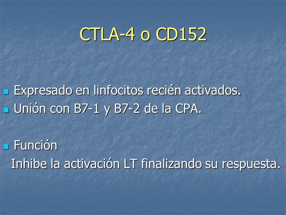 CTLA-4 o CD152 Expresado en linfocitos recién activados. Expresado en linfocitos recién activados. Unión con B7-1 y B7-2 de la CPA. Unión con B7-1 y B