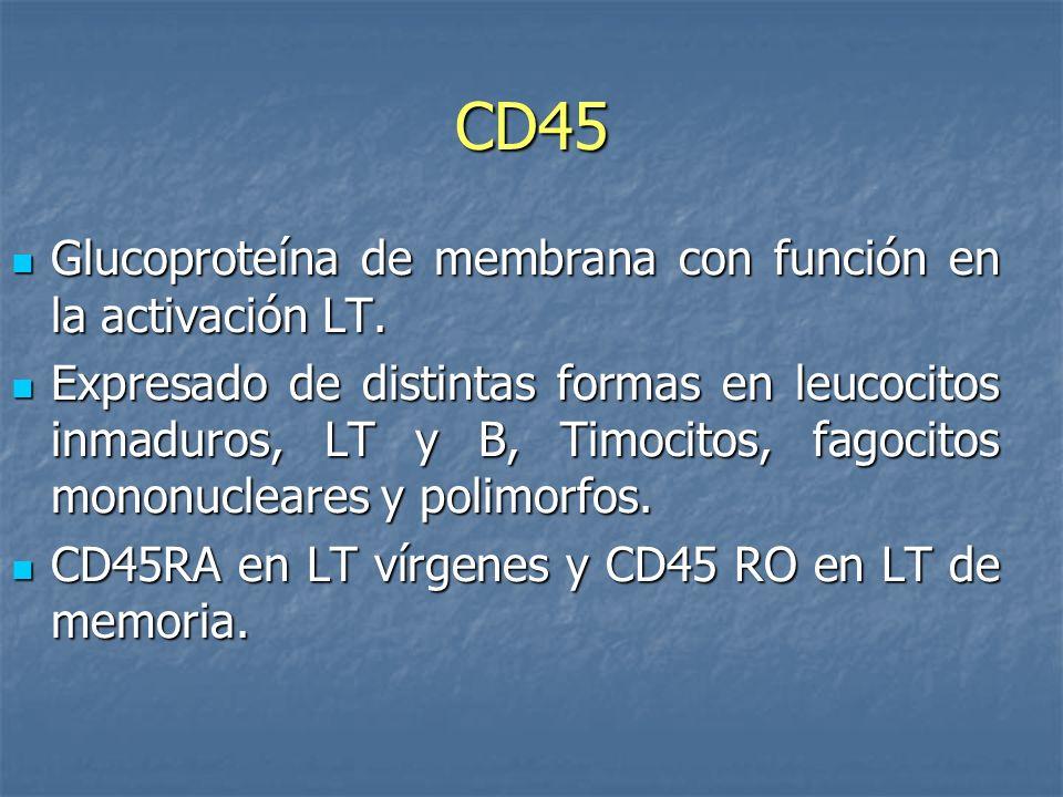CD45 Glucoproteína de membrana con función en la activación LT. Glucoproteína de membrana con función en la activación LT. Expresado de distintas form