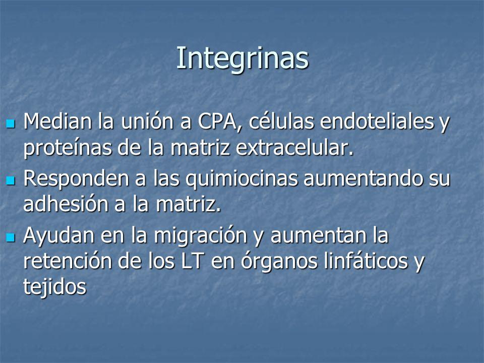 Integrinas Median la unión a CPA, células endoteliales y proteínas de la matriz extracelular. Median la unión a CPA, células endoteliales y proteínas