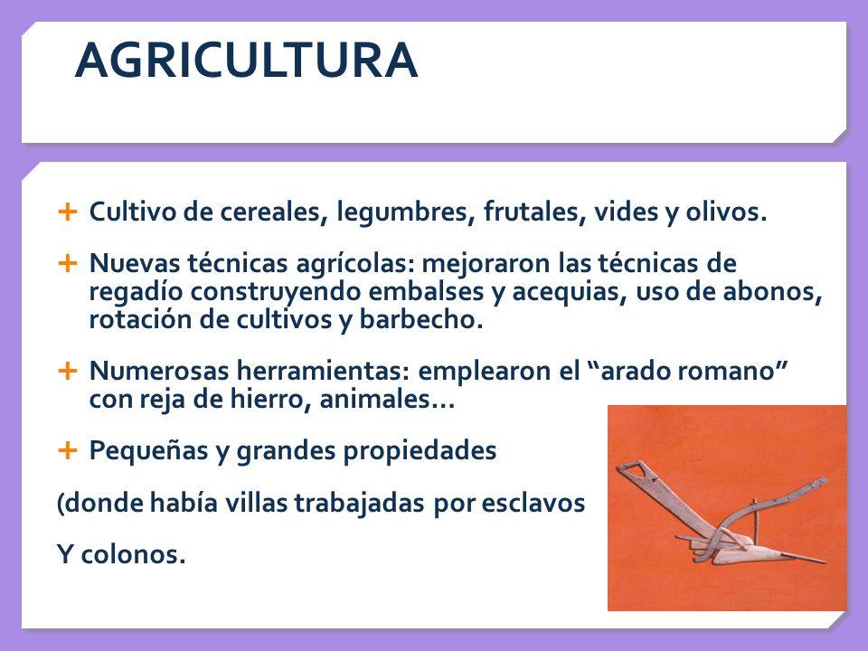 AGRICULTURA Cultivo de cereales, legumbres, frutales, vides y olivos. Nuevas técnicas agrícolas: mejoraron las técnicas de regadío construyendo embals